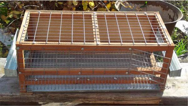 деревянная клетка