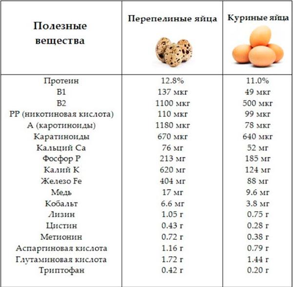 яйца перепелов сравнение с куриными