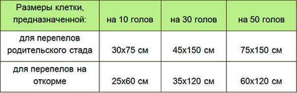 размеры клетки для перепелов