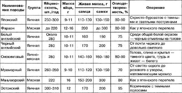 таблица Сколько яиц несет перепёлка